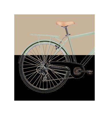 Bike IV