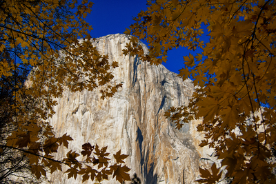 Detalhe El Capitain, Yosemite National Park