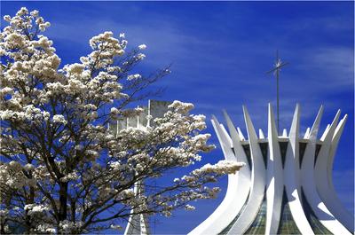 Série Cores - Catedral de Brasília