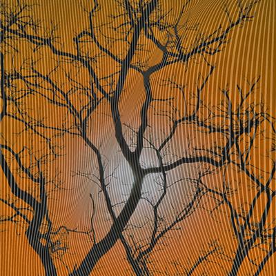 Árvore - Silhoueta