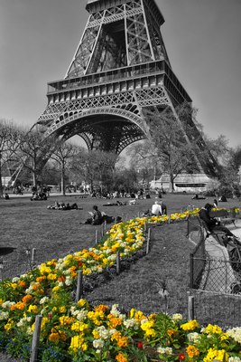 Toree Eiffel PB e Color