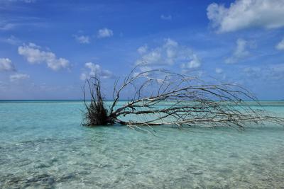 Praia de Cayo Largo I
