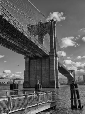 New York 4 - Coleção NY