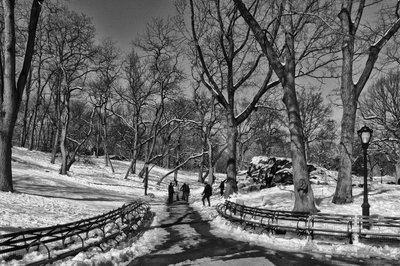 Inverno no Central Park