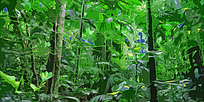 Floresta digital