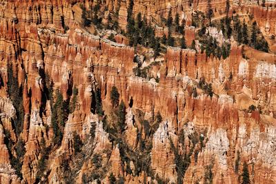 Bryce National Park III