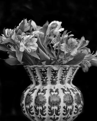 Vaso com flores II