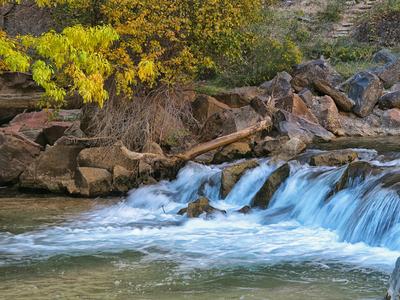 Outono no Zion National Park III