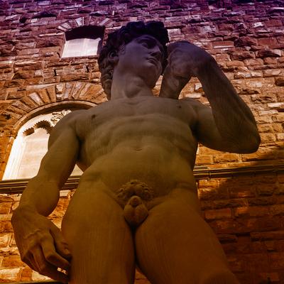 Davi de Michelangelo, Florença