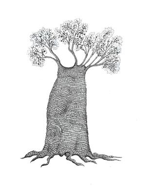 Baobá Grande