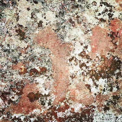 Pink Rust