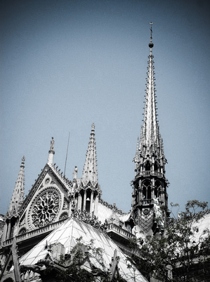 Catedral Notre-Dame 01