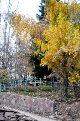 Fim de outono