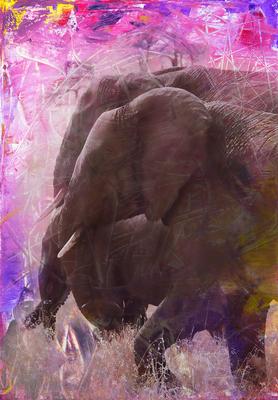 Cores Aquarela- Elefantes