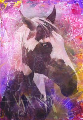 Cores Aquarela- Cavalos