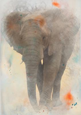 Aquarelas - Elefante1