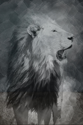 Leão Aqua