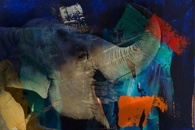 Elefante Acrílico