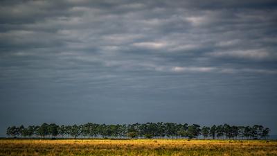 Paisagem - Rio Grande do Sul