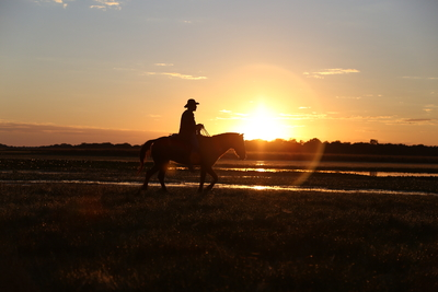 Cavalgada ao Por do Sol