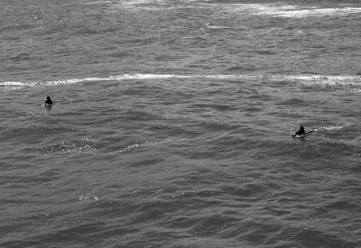 Parceria nas ondas