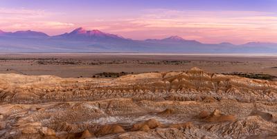 Pink Atacama