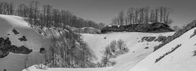 Snow Peace