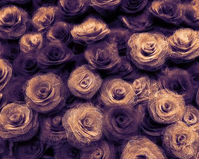 Floral Cor 001 LV