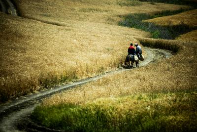 Marrocos e Agricultura- No caminho de casa